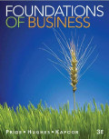 EBOOK : Foundations of Business, Third edition